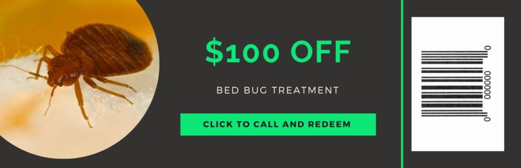 bed bug treatment coupon