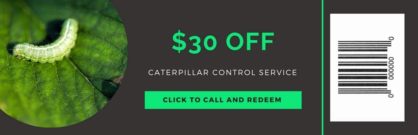 caterpillar control service coupon