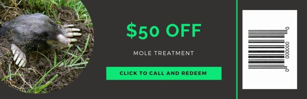 mole treatment coupon